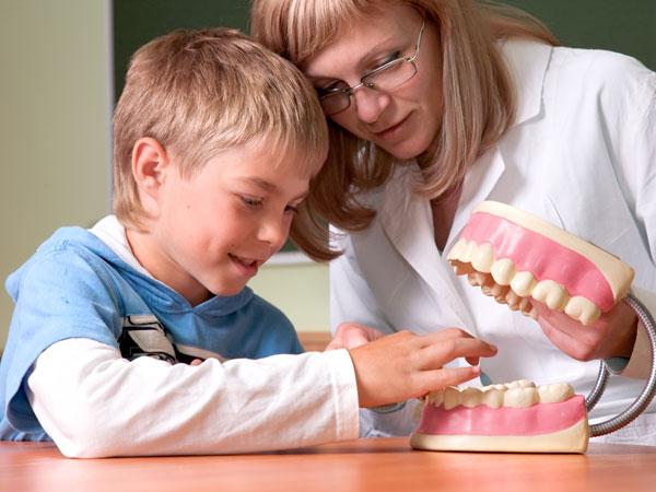 Fase activa del tratamiento con ortodoncia